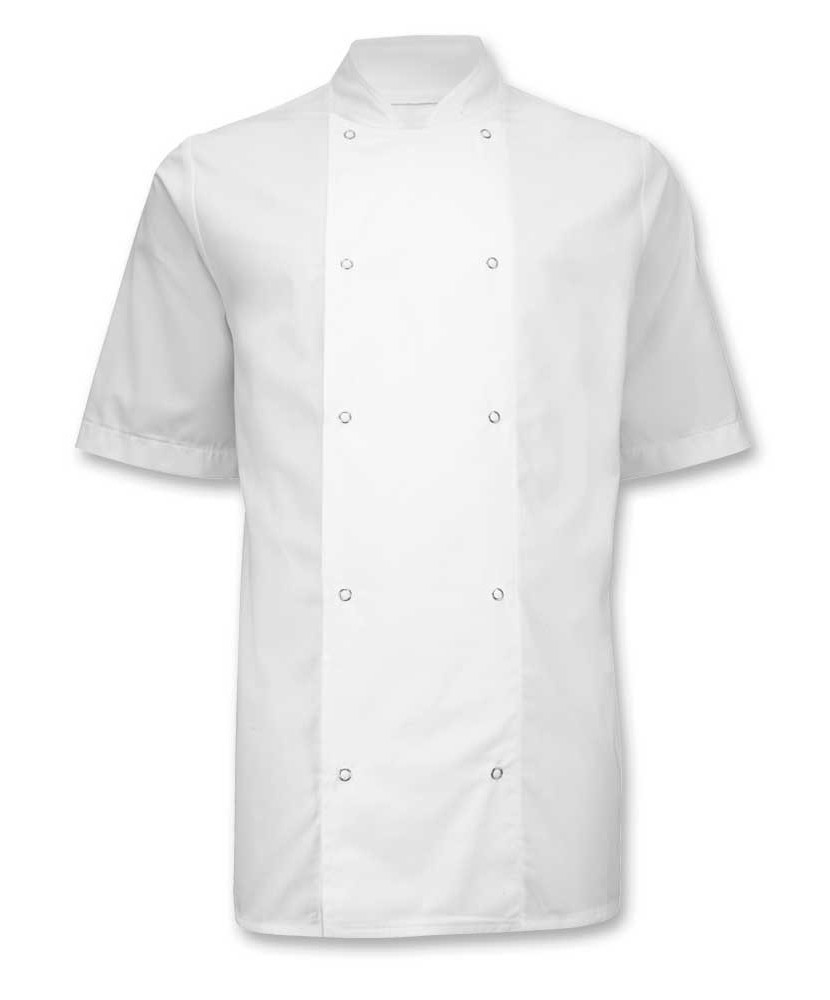 2562 Short Sleeve Chef's Jacket