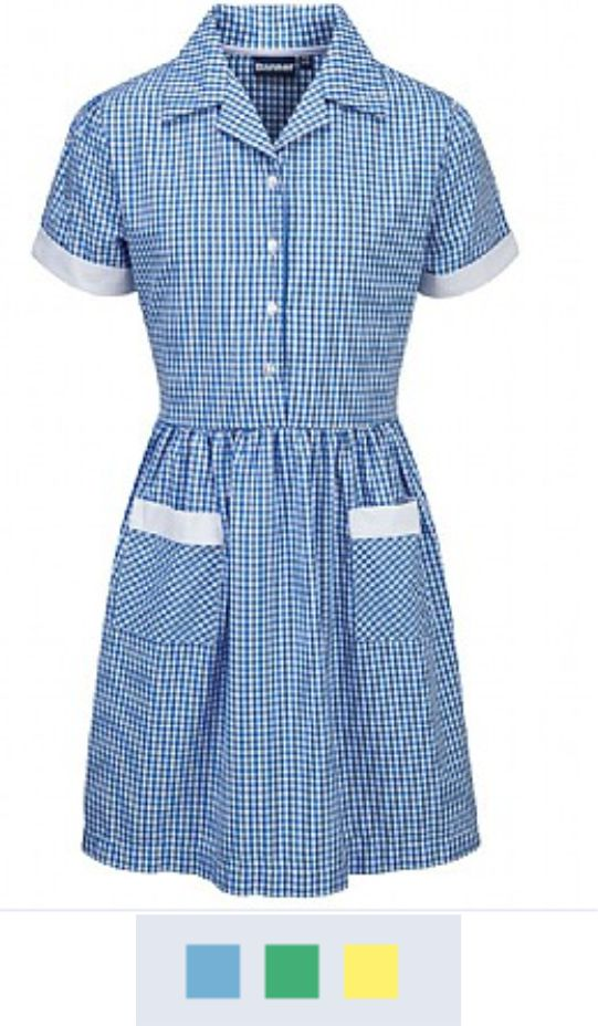 Banner Ayr Button Front Corded Gingham Dress